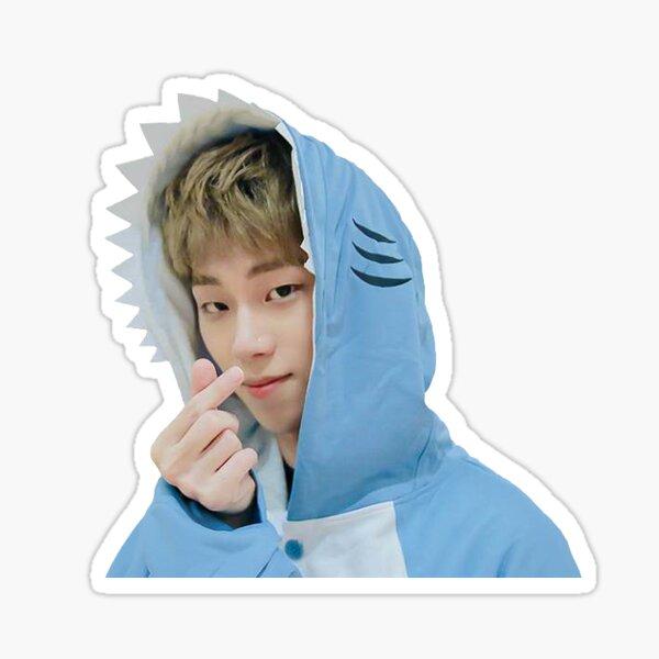 Youjin Shark Sticker Sticker