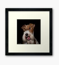 YOU, Sir, Have Double Standards!  Framed Print