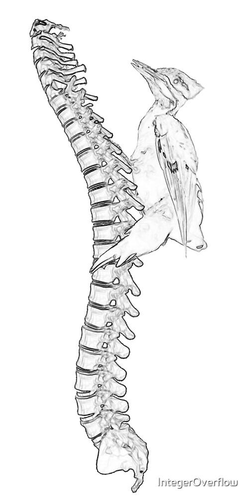 Ol' Fashion Spinal Tap by IntegerOverflow