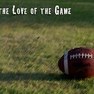 For the Love of the Game by Pamela Maxwell