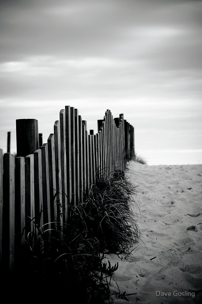 Black & White fence beach by Dave  Gosling Photography