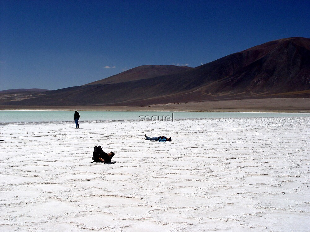 Atacama Desert, Chile by seguel