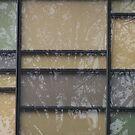 Arborious Reflectus Mondrianalli by Craig Watson