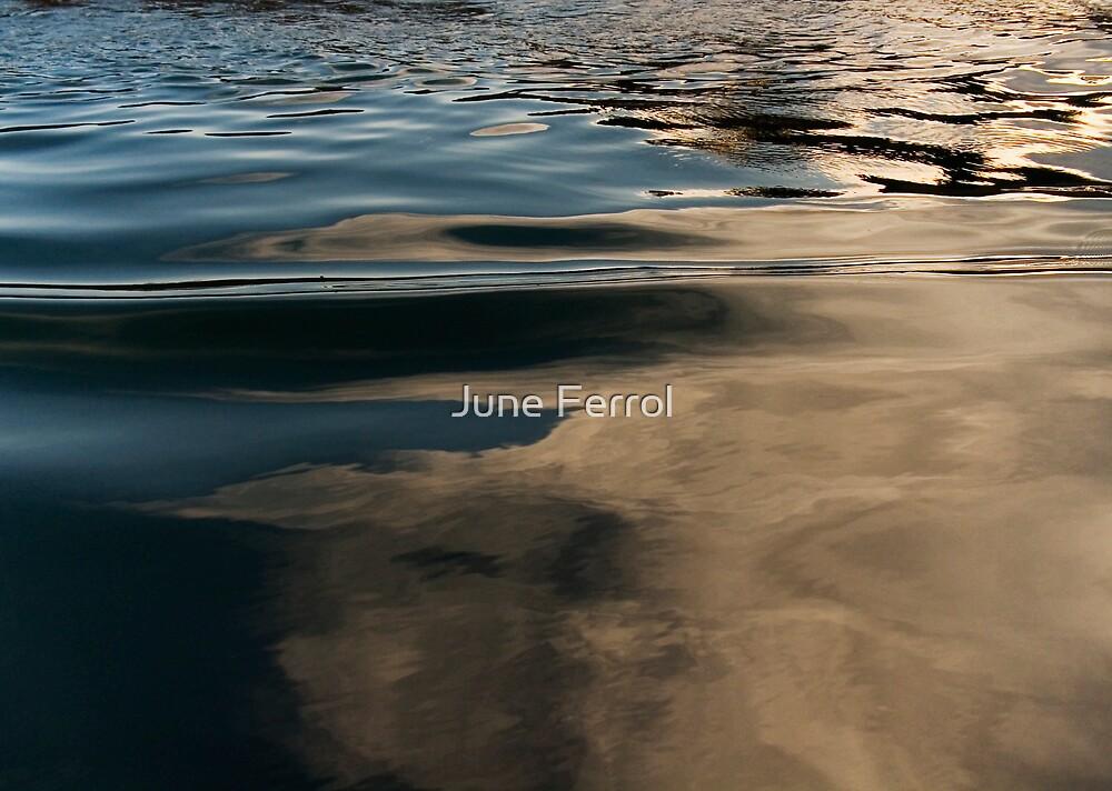 Metalic Dreams #2 by June Ferrol