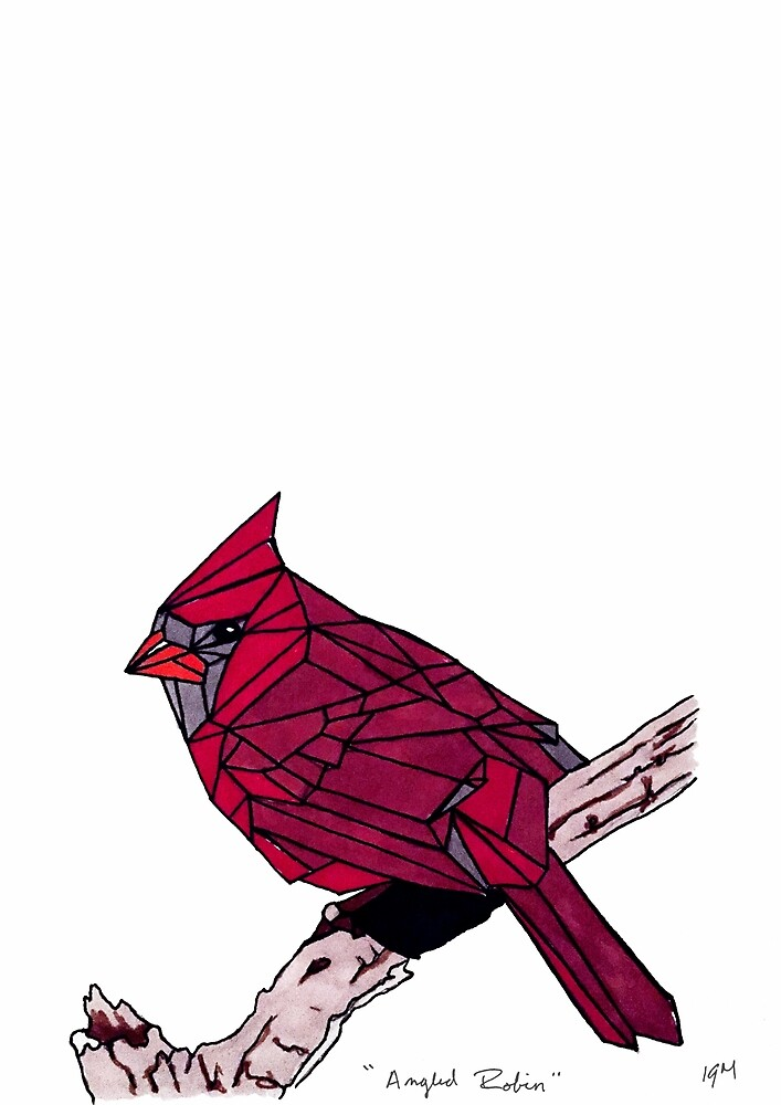 Angled Robin by Garrett Marks