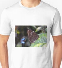 Beautiful brown butterfly sitting on leaves in the garden T-Shirt