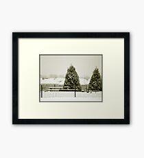 Trees in snow Framed Print