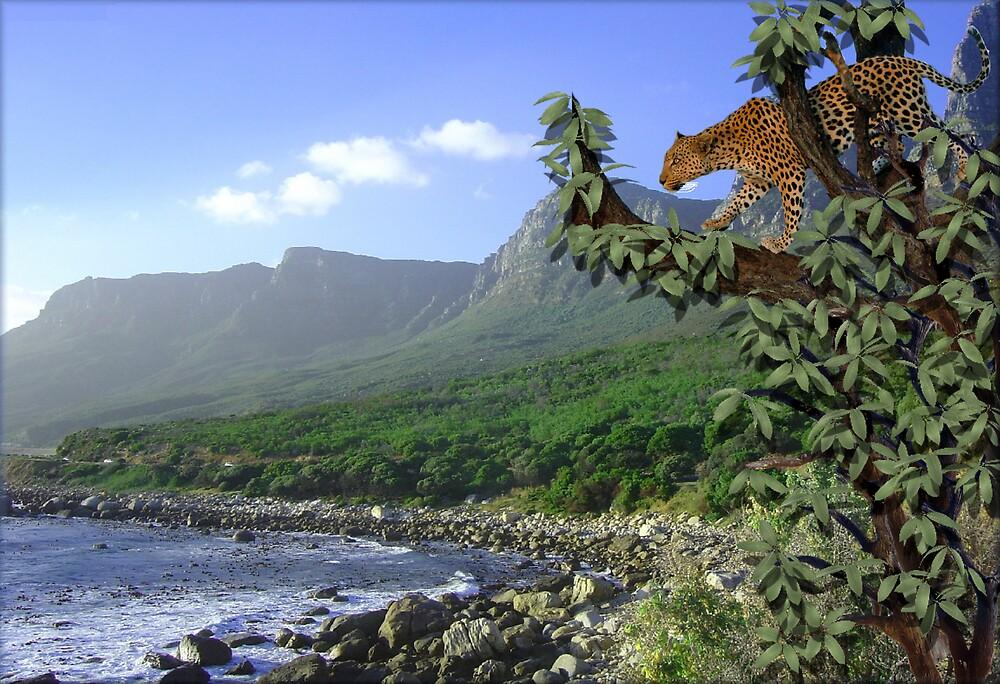 900-Jungle Meets Coastline by George W Banks