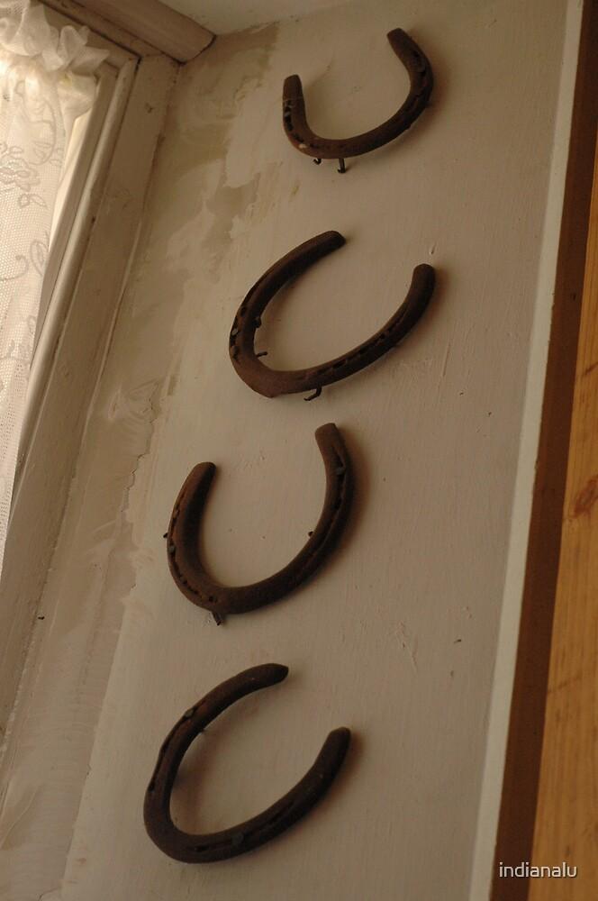 Horseshoes by indianalu