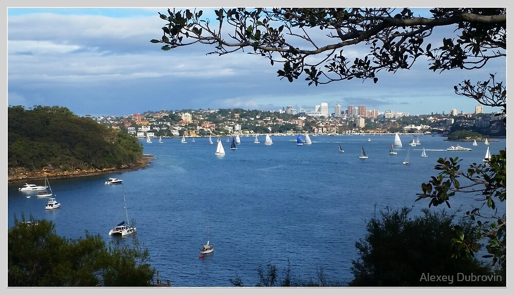 Sydney Harbour. Taronga by Alexey Dubrovin
