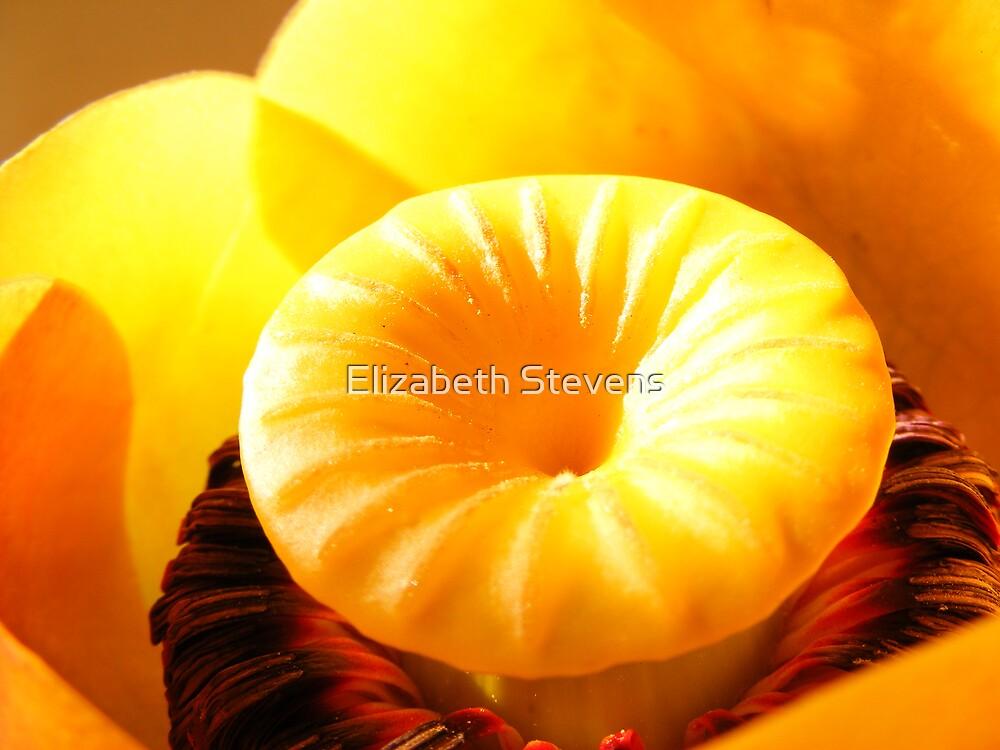 Hello, yellow. by Elizabeth Stevens