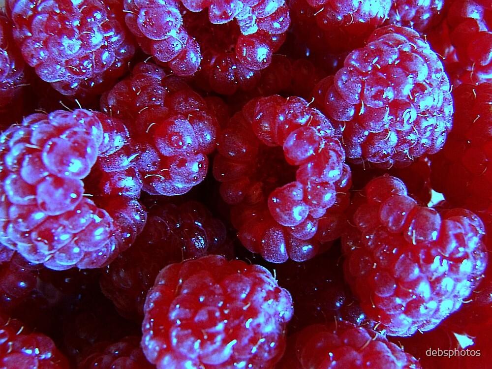 """""""Wild Raspberries"""".. by debsphotos"""
