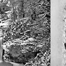 Frozen Multnomah Falls by Dan Jesperson