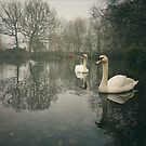 Swan Lake, Wandsworth Common by Ludwig Wagner