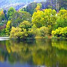 Autumn Scene by Kerry  Hill