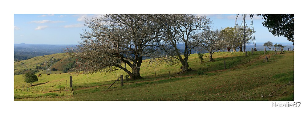 Panoramic 1 - Maleny by Natalie87