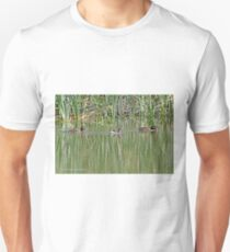 Hardheads and Australasian Grebe (379) T-Shirt