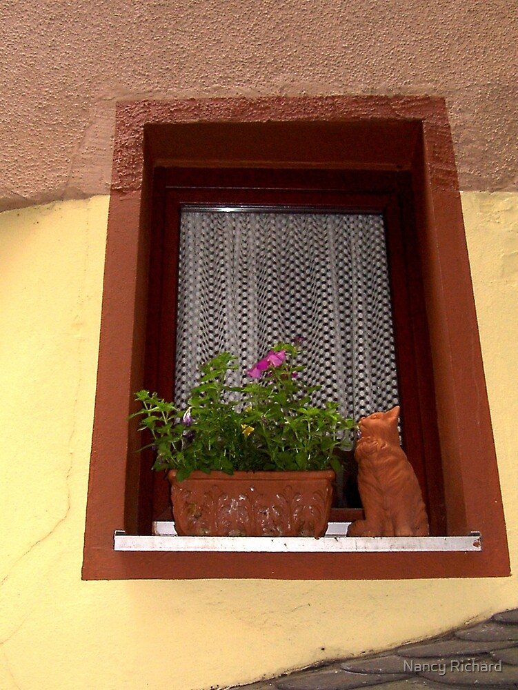 """How much is that """"kitty"""" in the window? by Nancy Richard"""