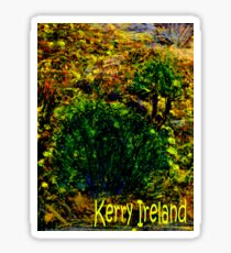 jGibney Ireland 1999 Kerry Lake District Ireland The MUSEUM Red Bubble Gifts Sticker