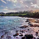 Hana Maui Coast by Philip James Filia