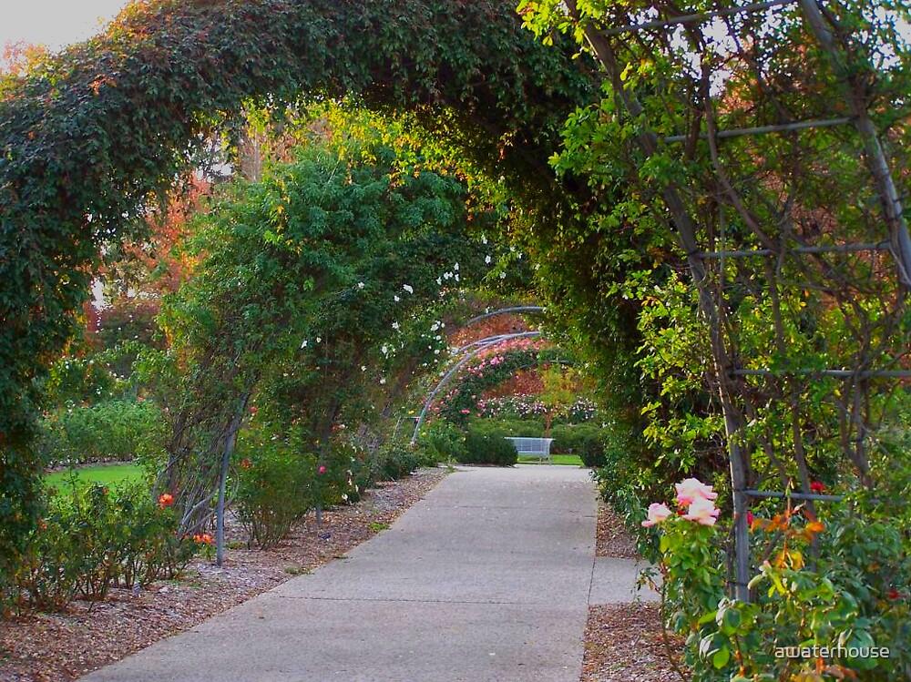Garden Arch by awaterhouse