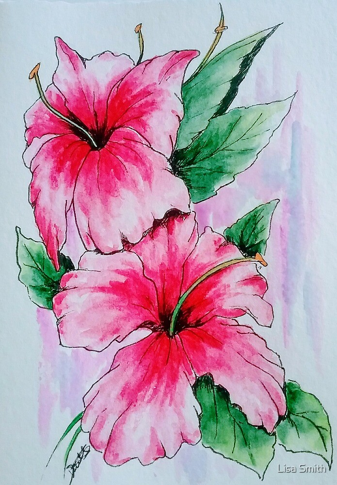 Hibiscus  by Lisa Smith