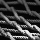 Macro Hammock Ropes by Pandamatastic