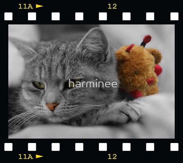 Framed  by harminee