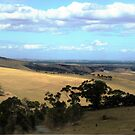 *The Wide Brown Land for Me, Vic. Australia* by EdsMum