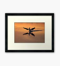skids down...coming in to land....get the balance right.... Framed Print