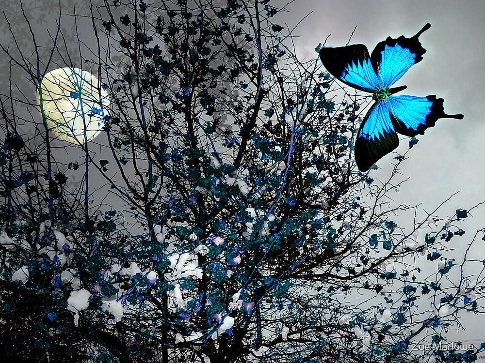 In The Blue Of Love by Zoe Marlowe