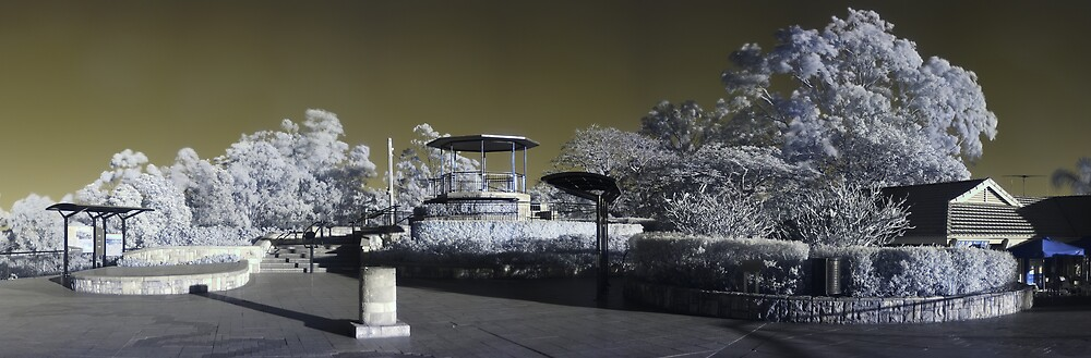 Mt Coot Tha, Infrared by David James