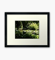 Trees & Water Lilies Framed Print