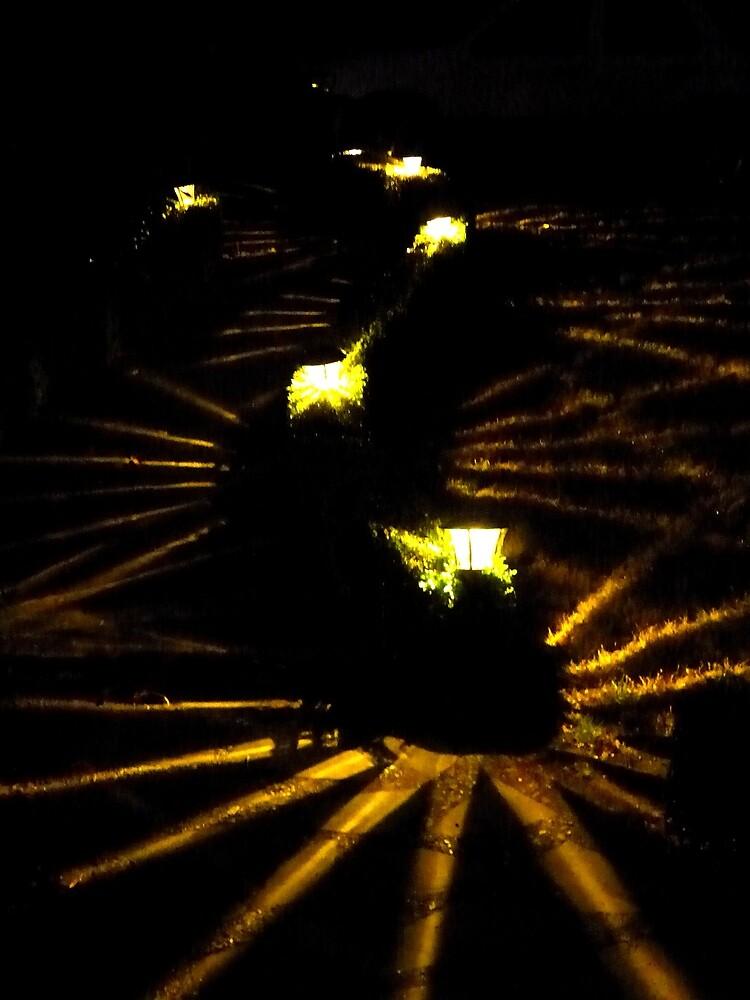Lighting the Path by oneeyephoto