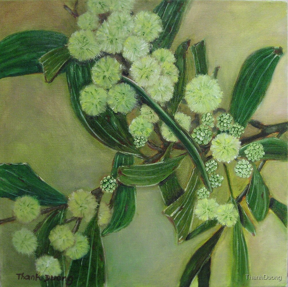 Golden Wattle  by Thanh Duong