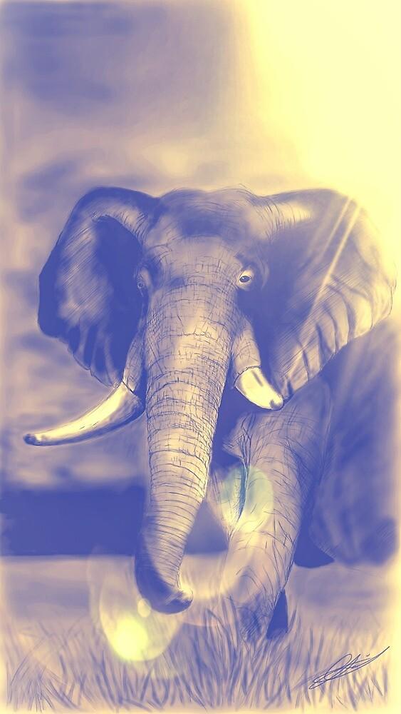 Elephant Haze by Lloyd39