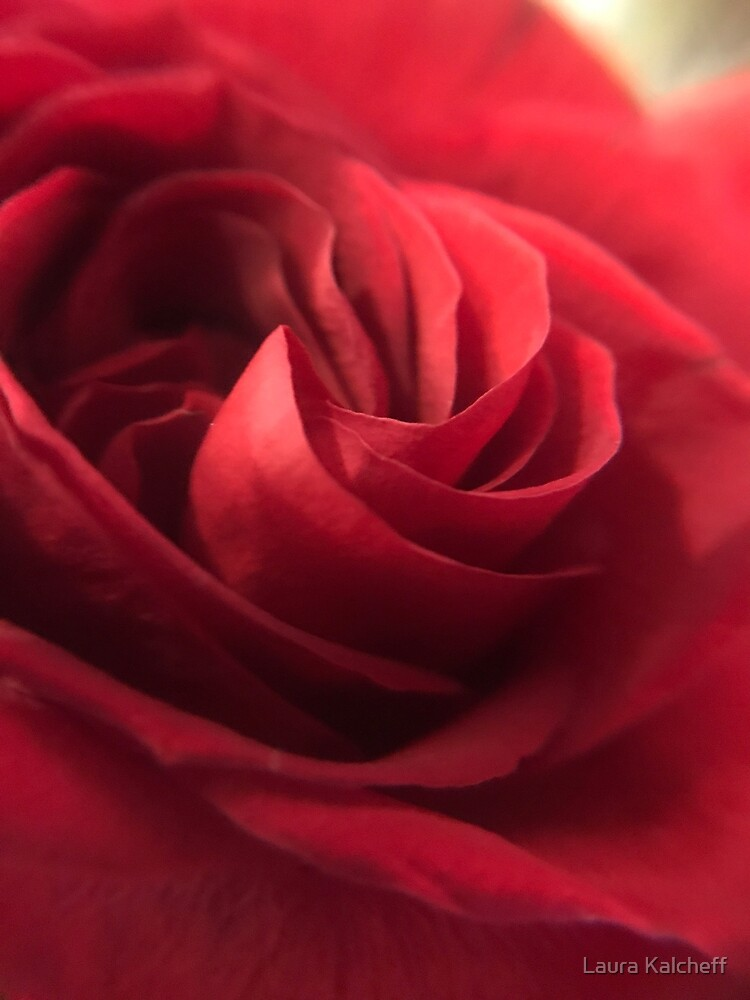 A Rose By Any Other Name by Laura Kalcheff