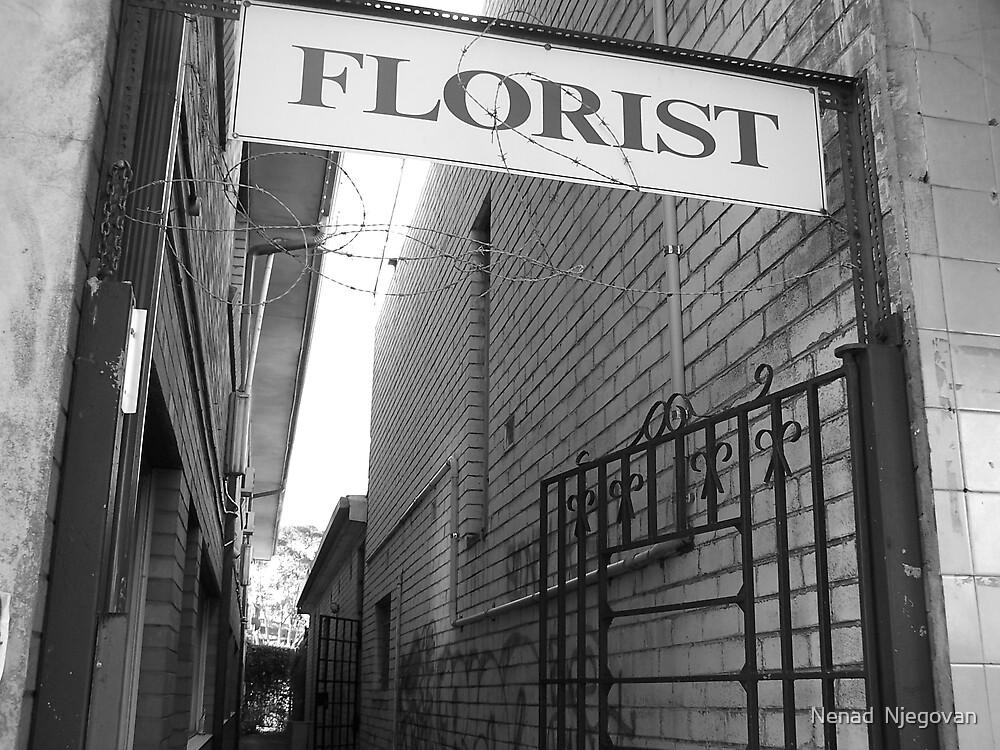 liverpool florist by Nenad  Njegovan