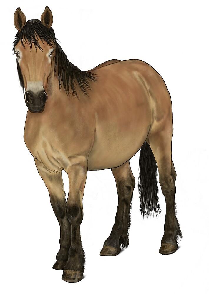 Horse 06 by eleyne