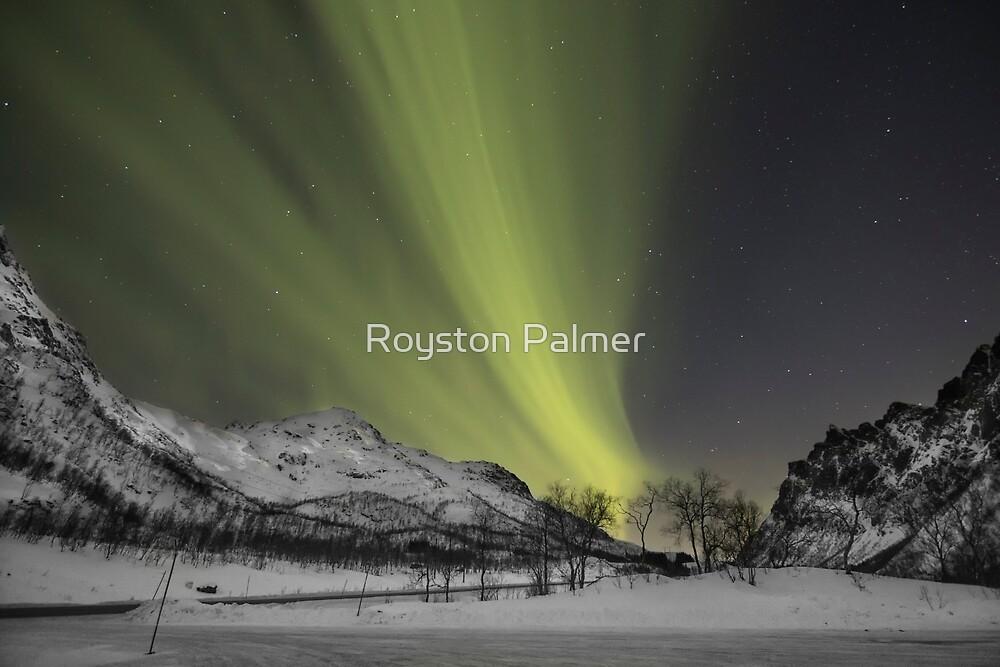 Lofoten - Norway by Royston Palmer