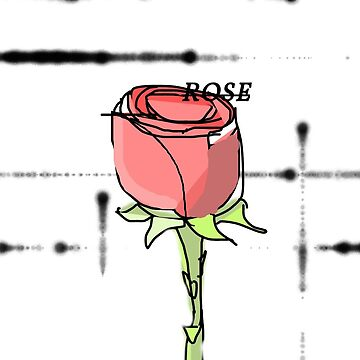 Rose Sketch by boiandoats