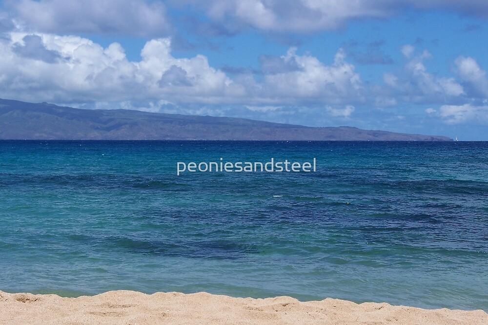 Maui Beach by peoniesandsteel