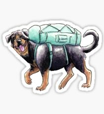 Summer Dog: Rottweiler Sticker