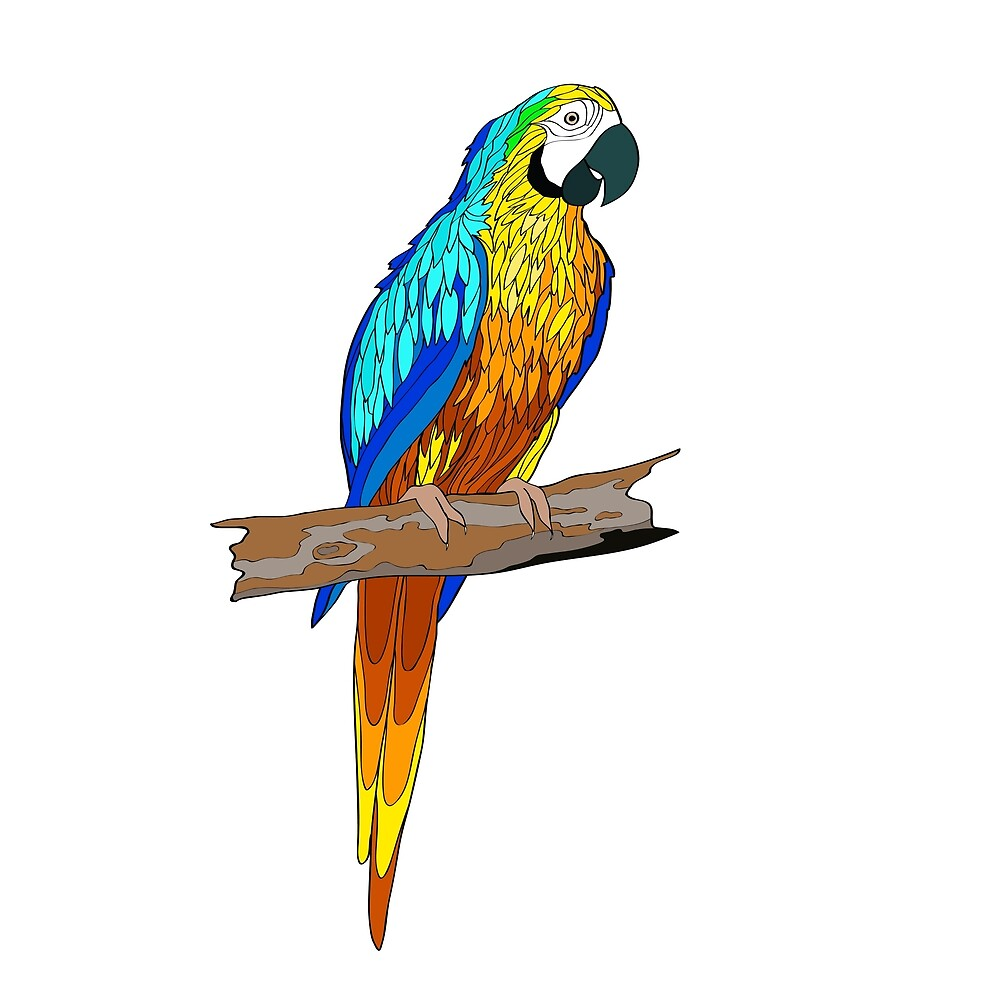 Sitting on a branch parrot by margo-soleil
