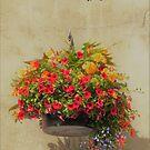 More Petunias by Fara
