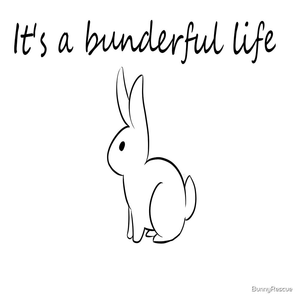 It's a bunderful life by BunnyRescue