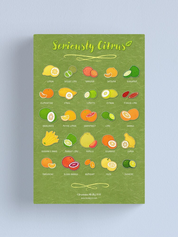 Alternate view of Seriously Citrus Canvas Print