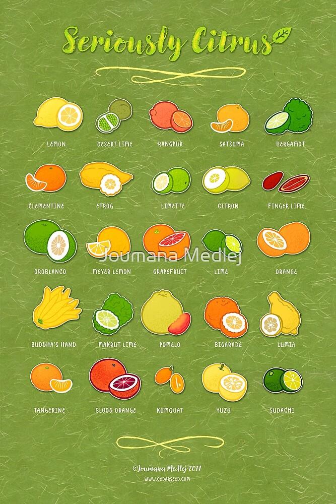 Seriously Citrus by Joumana Medlej