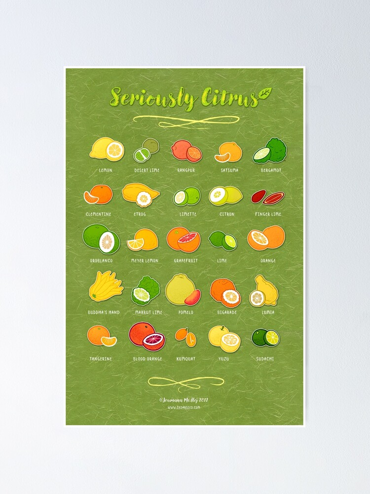 Alternate view of Seriously Citrus Poster