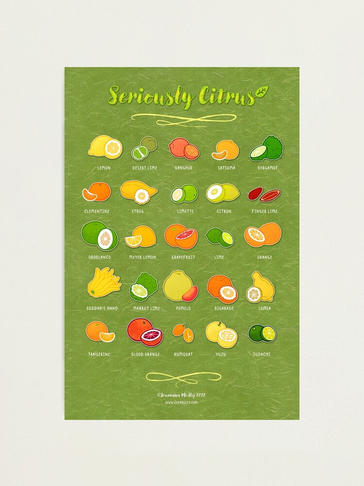 Alternate view of Seriously Citrus Photographic Print
